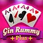Gin Rummy Plus game icon